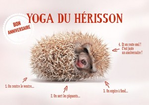 Carte postale double yoga du hérisson Art Grafik