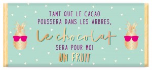 Chocolat le cacao est un fruit Art Grafik
