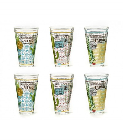 Coffret 6 verres cactus Natives